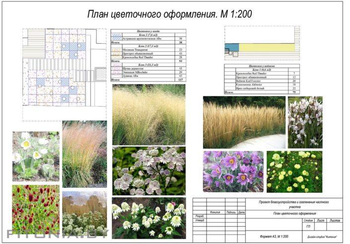 схема цветников
