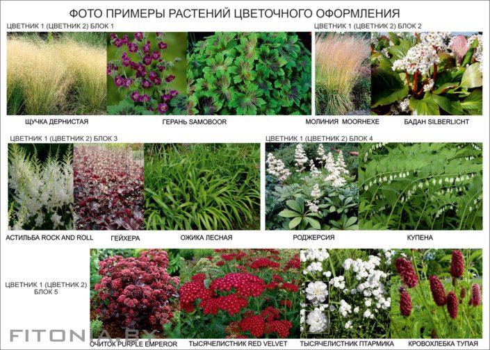 примеры цветочного оформления